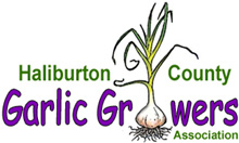 Haliburton Garlic Growers Associations